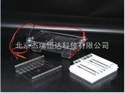 琼脂糖水平电泳仪(槽)(中号)
