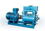 水环真空泵/不含电机 型号:ZZ71-SKA202 库 号:M403044