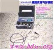 便携式烟气分析仪 型号:BBGH-pFlue2000(全参数测量)