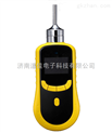 供应泵吸式氢气浓度检测仪和便携式氢气泄漏检测仪DJY2000