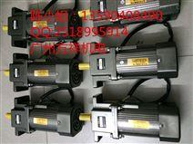 东文电机,小型电机2IK6RGN-C 微型调速器