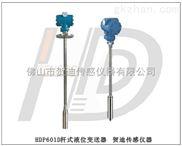 HDP601D-直杆式液位变送器插入式液位变送器