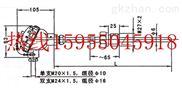 WRN-625压璜热电偶