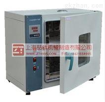 电热恒温烘箱202-3A