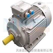 西纳电动机之OME直流电动机