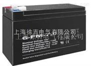 太阳能蓄电池 6-FM-100厂家