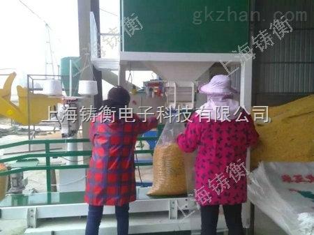 郑州小麦包装机厂家