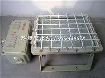 BAT53-L250防爆泛光灯