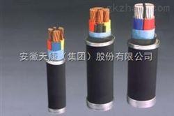 CJV80/SA安徽天康集团阻燃船用电力电缆生产厂家,产品型号,价格