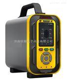鞍山手提式复合气体检测仪