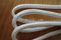 耐高温500°特种电缆