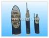 YVV,YVVP电缆价格聚氯乙烯仪表电缆