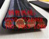 移动扁电缆YFFB_6*16+2*10天康扁电缆生产厂家